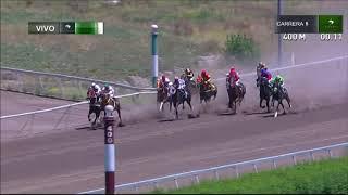Vidéo de la course PMU PREMIO FERGUSON