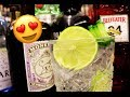 HOW TO MAKE THE BEST GIN TONIC Gin And Tonic Recipe Guide mp3