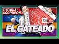 EL GATEADO - TUTORIAL DE ACORDEON