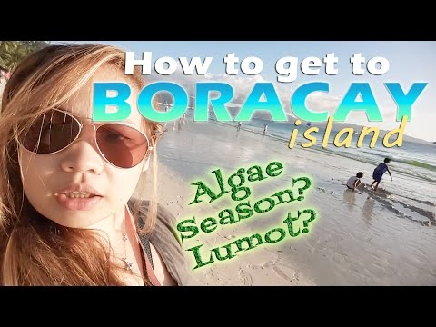 Boracay 2017 Day 1: How to go + Airbnb + Algae Season + Streetfood | ChubbyChiniCatt