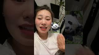Ян Гэ китайский анекдот про панду на русском языке
