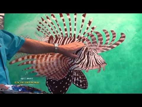Lionfish And Reproduction - The Incredible Statistics