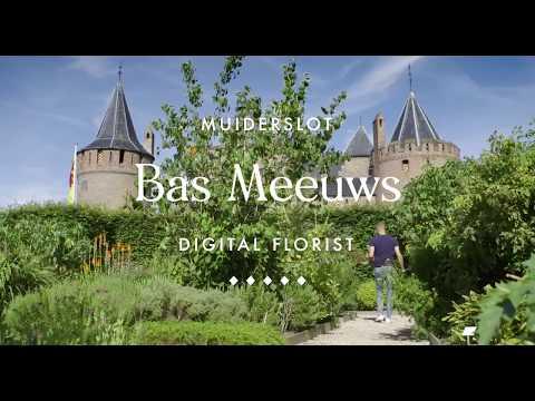 Exposé #17: explore the floral art of Dutch digital florist Bas Meeuws
