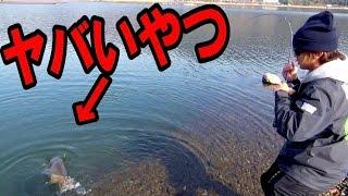 【バス釣り】ヤバいやつ2匹もキタのですが。。大雪残る河口湖で。。 thumbnail
