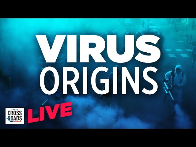 Live Q&A: WHO Report On Virus Origins Raises Calls for Lab Origin Investigation | Crossroads
