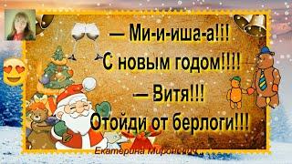 Ми-и-ша! С Новым Годом!..  Смешные Анекдоты Выпуск 14 Смех Юмор Позитив Шутки Екатерина Мироневич