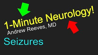 Neurologist gives a very brief introduction to seizures