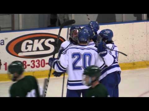 2016 NEHC Men's Hockey Championship: #1 UMass Boston vs #2 Babson College (3/5/16) Highlights
