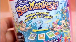 Морские Обезьянки Живые Существа из икринок Sea Monkeys - Артемии