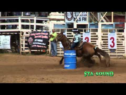 Sta-Sound Equine Joint Supplement