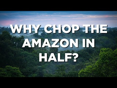 Why chop the Amazon in half?