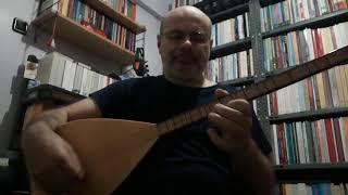 Ali Fuat Aydın - Karanfil dallanır mı