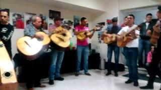 La Media Calandria. Fandango Encuentro de Mariachi Tradicional 2014