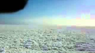 видео энкамп