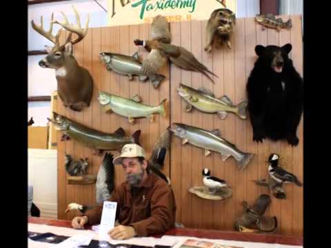 Natures Way Taxidermy
