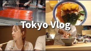 1시간이상 웨이팅 기본! 도쿄역 카이센동 맛집! 도쿄역에서 꼭 사야할 것 (feat.먹을꺼...) |도쿄일상 vlog