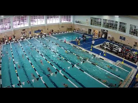 CEESA Swim Meet 2017   Anglo American School Of Moscow