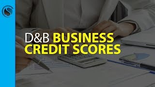 Dun and Bradstreet Business Credit Scores