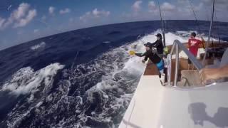 Fa-La-Me Sportfishing (Viking 92)