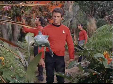 Star Trek - Captain Kirk's Court Martial    Bad Panda