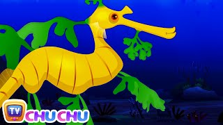 Leafy Sea Dragon Nursery Rhyme | ChuChuTV Sea World | Animal Songs & Nursery Rhymes For Children thumbnail