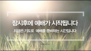 7-29-20 남플 새벽예배(대하3:1-14)