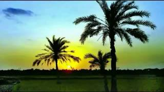 Beautiful Flute Music of Bangladesh | Dhono Dhanno Pushpo Bhora | APO Fun Times