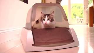 Petsafe ScoopFree автоматический самоочищающийся туалет для кошек