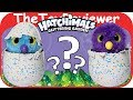 default - Hatchimals Glittering Garden - Hatching Egg and Interactive Shimmering Draggle by Spin Master