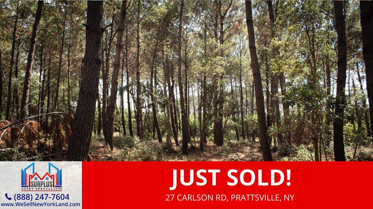 Norwegian Rd, Prattsville, NY - Wholesale Land For Sale New York - www.WeSellNewYorkLand.com