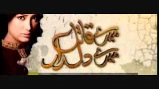 Mere Qatil Mere Dildar Mere Paas Raho  Hum T.V OST