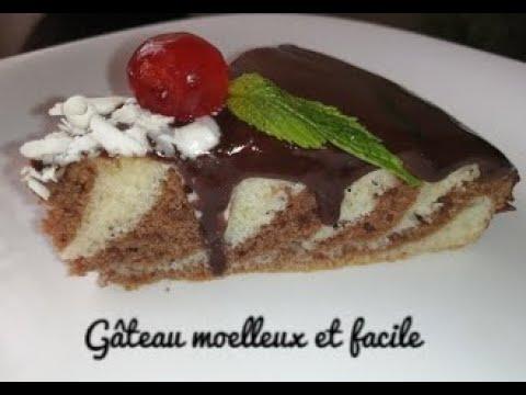 .meilleur-recette-de-cake-marbré-chocolat-vanille/gateau-zébré-marbré
