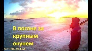 Зимняя рыбалка на Южном Урале. В погоне с блесной за крупным окунем.