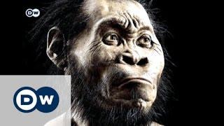 هومو ناليدي - علماء يعثرون على أنواع عتيقة من أشباه الإنسان | الأخبار