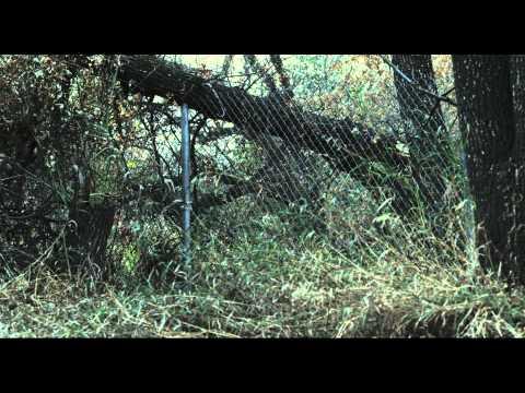 13 Eerie - Trailer