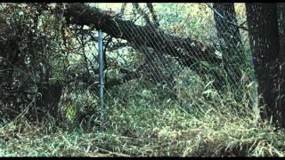 13 Eerie - Trailer thumbnail