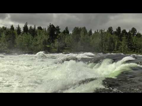💦 Nature Sounds: Wild Norwegian River Natural White Noise (Relax, Sleep, Focus)