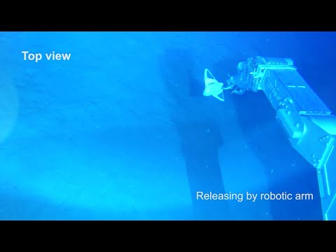 Chinese researchers develop soft robot for deep-sea exploration