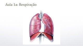 Respiração - Dicas sobre trompete - Prof. Érico Fonseca