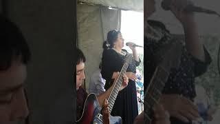 Зейнаб ханларова 2016
