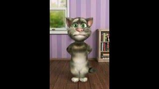 القط يغني اغنية (ana hak hak hak ..(cheba nagwan