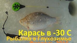 Рыбалка, Февраль, Карась