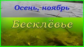 18 ноября. БЕСКЛЕВЬЕ. Рыбалка. Fishing. Подводная съемка.