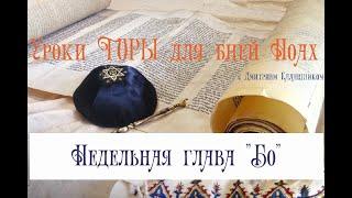 Тора для бней Ноах - Урок по недельной главе «Бо» (ивр. בא — «Войди…»)