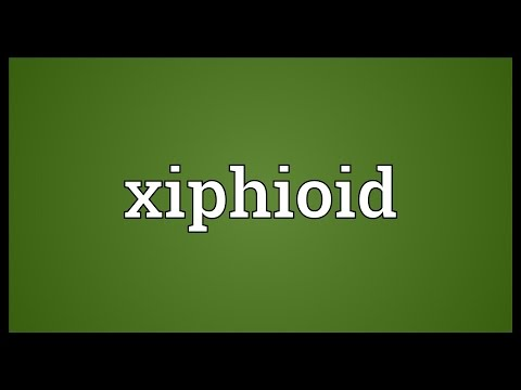 Xiphioid Meaning