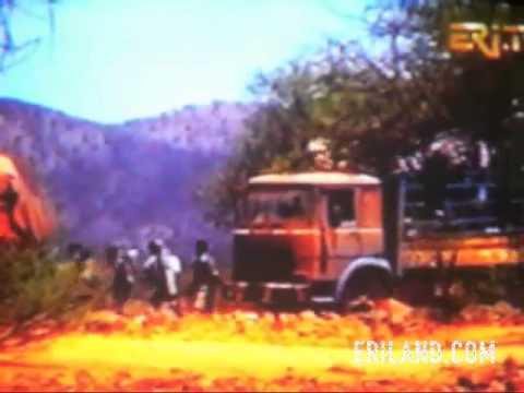 Eritrea and Ethiopia Border War 123,000 Ethiopians Killed