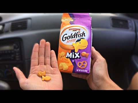 Xtra Cheddar And Pretzel Goldfish - Pepperidge Farm Review Ep.07