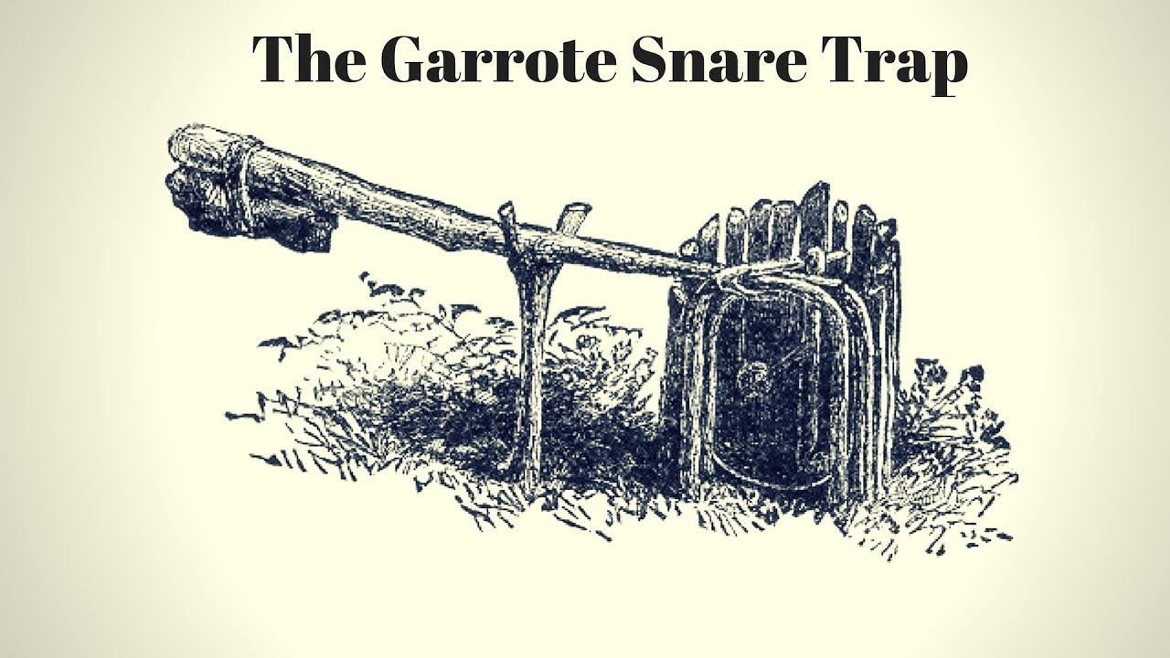 rodent-trap-from-an-1881-book-the-garrote-snare-trap-mousetrap-monday