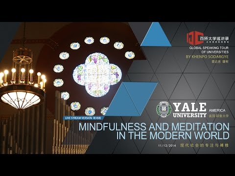 Mindfulness and Meditation in the Modern World (Lecture at Yale University,America)