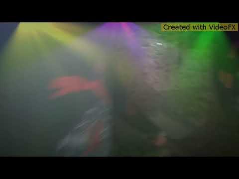 Super hit video lagatar video video Bhojpuri